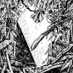 Membrana. Obra de Cristina Ramirez